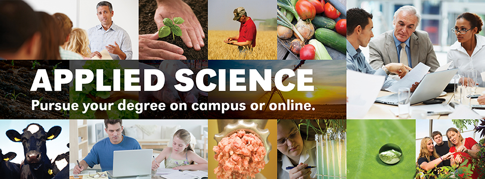 bachelor of applied science online